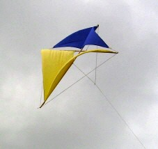 Dahl in his patent: